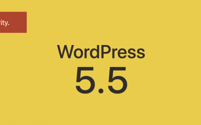 Why WordPress Update 5.5 Breaks Websites